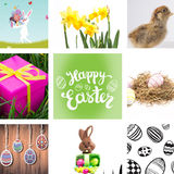 Composite image of easter bunny with eggs Royalty Free Stock Photography