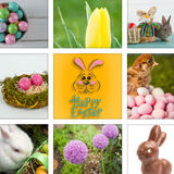 Composite image of easter bunny with greeting stock images