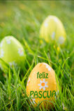 A Composite image of feliz pasqua Stock Photo