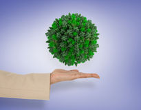 Composite image of female hand presenting green sphere. Female hand presenting green sphere against purple vignette Royalty Free Stock Photography