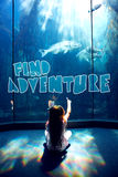Composite image of find adventure Royalty Free Stock Photography