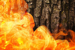 Composite image of fire Stock Image