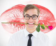 Composite image of geeky hipster holding a red rose in his teeth Stock Photos