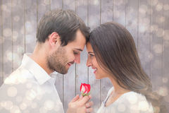 Composite image of handsome man offering his girlfriend a rose Stock Photos