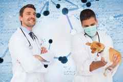 Composite image of happy doctor and vet Royalty Free Stock Images