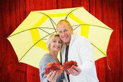 Composite image of happy mature couple showing autumn leaves under umbrella Stock Images