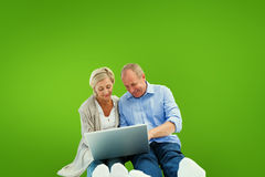 Composite image of happy mature couple using laptop Stock Photo