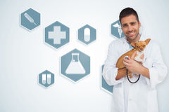 Composite image of happy vet checking dog with stethoscope Royalty Free Stock Image