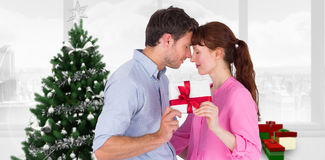 Composite image of loving couple holding a gift Stock Photography
