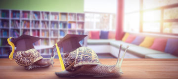 Composite image of mortar board Royalty Free Stock Image