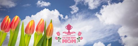 Composite image of mothers day greeting. Mothers day greeting against flowers on sky background royalty free stock images