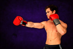 Composite image of muscly man wearing red boxing gloves and punching Royalty Free Stock Photo