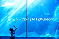Composite image of never stop exploring. Never stop exploring against young man looking at a sea turtle swimming Royalty Free Stock Photography