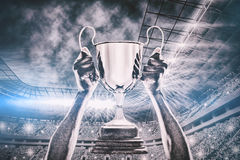 Free Composite Image Of Cropped Hand Of Athlete Holding Trophy 3d Stock Photography - 84355992