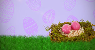 Composite image of pink easter eggs on artificial nest Royalty Free Stock Photos
