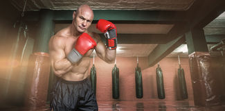 Composite image of portrait of boxer with red gloves Stock Photos