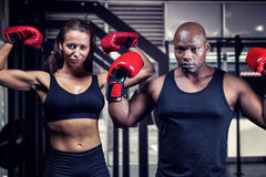Composite image of portrait of boxers flexing muscles. Portrait of boxers flexing muscles against side view of barbells Stock Images