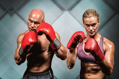 Composite image of portrait of boxers with gloves Stock Photo