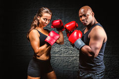 Composite image of portrait of male and female athletes with fighting stance. Portrait of male and female athletes with fighting stance against dark background royalty free stock images