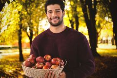 Composite image of portrait of smiling man holding basket with apples Royalty Free Stock Photos