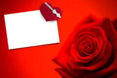 Composite image of red rose in bloom Royalty Free Stock Images