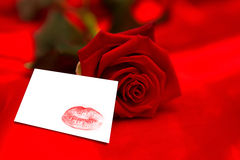 Composite image of red rose lying on surface Stock Images
