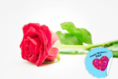 Composite image of red rose with stalk and leaves lying on surface Royalty Free Stock Images