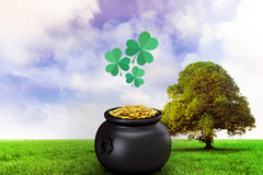Composite image of shamrock imagess Stock Images