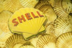 Composite image of Shell oil company sign over a bed of seashells Stock Images