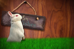 Composite image of side view of cute rabbit. Side view of cute rabbit  against wood background Stock Photos