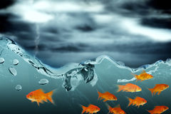 Composite image of side view of fish swimming Stock Photo