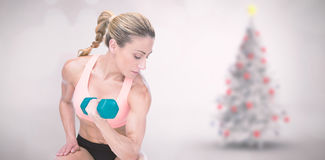 Composite image of strong woman doing bicep curl with blue dumbbell. Strong woman doing bicep curl with blue dumbbell against blurry christmas tree in room Stock Photography