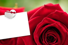 Composite image of two red roses Royalty Free Stock Photo