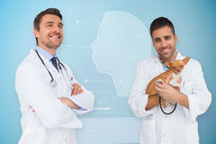 Composite image of vet holding chihuahua and doctor Royalty Free Stock Image