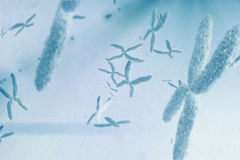 Composite image of view of a chromosome Stock Images