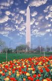 Composite image of Washington Monument and blue sky with white puffy clouds Royalty Free Stock Photos