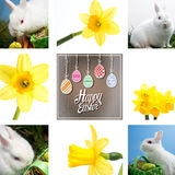 Composite image of white rabbit sitting beside easter eggs in green basket Royalty Free Stock Images
