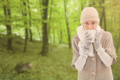 Composite image of woman in warm clothing holding mugs Stock Image