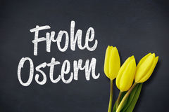 A Composite image of yellow tulips Royalty Free Stock Images