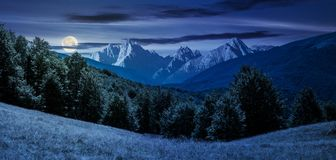 Composite summer landscape in mountains at night. In full moon light. perfect countryside scenery with beech forest on a grassy hillside and High Tatra mountain Royalty Free Stock Photo