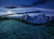 Forest on grassy hillside in tatras at night. Composite summer landscape. Path through the forest on grassy hillside in High Tatras. beautiful summer weather Royalty Free Stock Photography