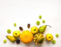 Composition élégante des potirons, fruits, fleurs, cônes Première vue sur le fond blanc Configuration d'appartement d'automne Photos libres de droits