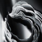 Composition abstraite noire et blanche avec la crêpe Images stock
