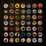 Composition of Animal eyes in cercle Stock Photography