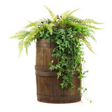 Composition of artificial flowers in old wooden barrel isolated Royalty Free Stock Photo