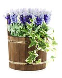 Composition of artificial flowers in old wooden barrel. Royalty Free Stock Images