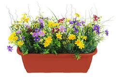 Composition of artificial garden flowers in brown flowerpot isol Stock Photography