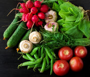 Composition with assorted raw organic vegetables Royalty Free Stock Image