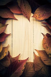 Composition autumn fiery orange leaves white boards Stock Photo
