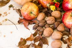 Composition of autumn harvest with apples and nuts. Autumn harvest composition with pumpkins and apples stock photography